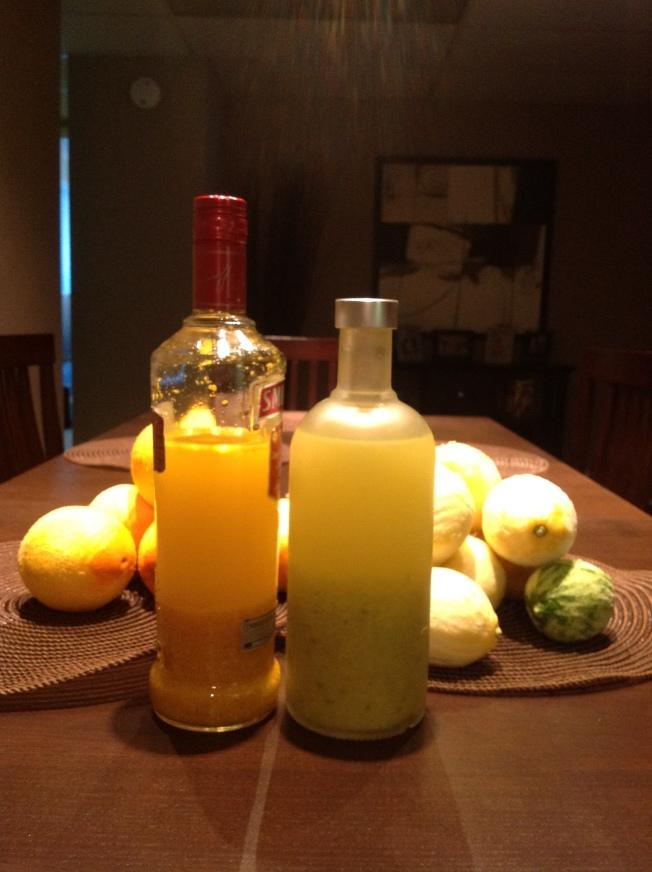Making Limoncello and Orangello | traceymevents
